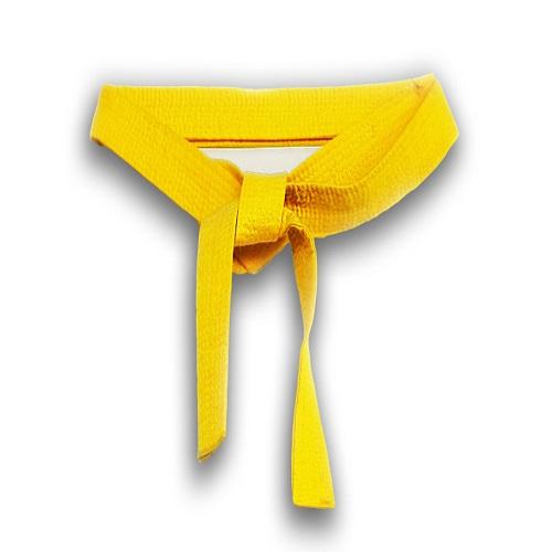 10 Cosas que Cada Yellow Belt Debe Saber